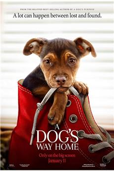 A Dog's Way Home (2019) 720p