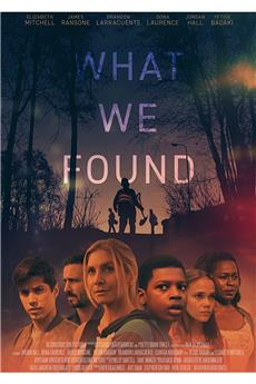 What We Found (2020) 720p